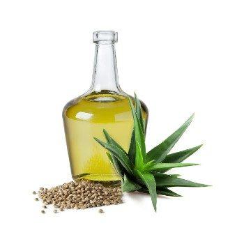 7. Alorvera Seed Oil