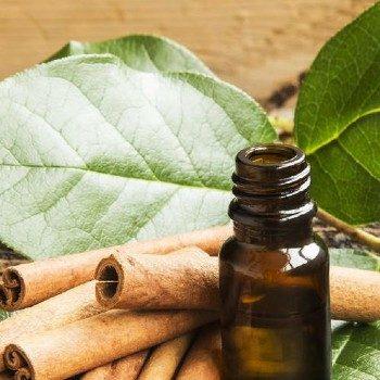 Cinnamon Bark _ Leaf Oil